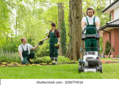 Optimistic team of gardeners planting flowers and mowing lawn