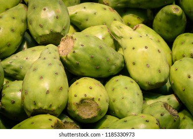 Opuntia, commonly called prickly pear, is a genus in the cactus family, Cactaceae. Prickly pears are also known as tuna (fruit), sabra, nopal (paddle, plural nopales)