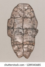 Oracle characters carved on tortoise shells during the Yin Shang period in ancient China.