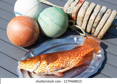 Orange ballan wrasse on a pewter dish after fishing in Brittany and buoys