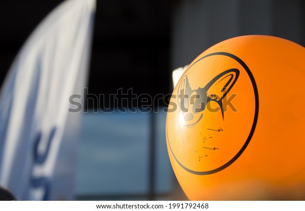 orange-balloon-corgi-dog-muzzle-600w-199