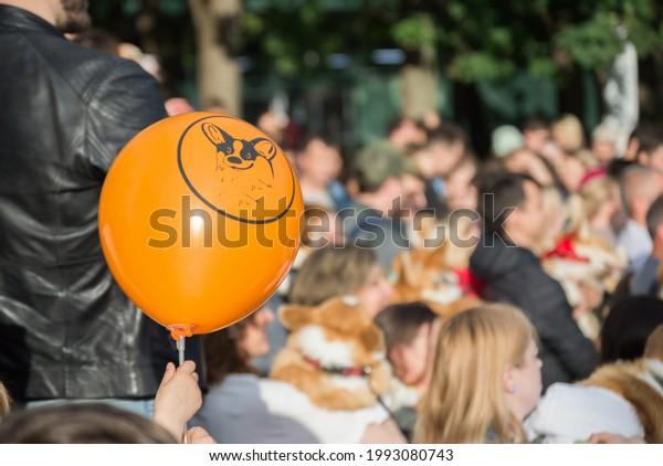 orange-balloon-picture-corgi-on-600w-199