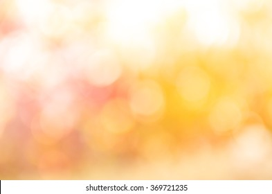 orange bokeh background from nature under tree shade