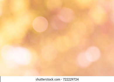 orange bokeh background from nature under tree shade