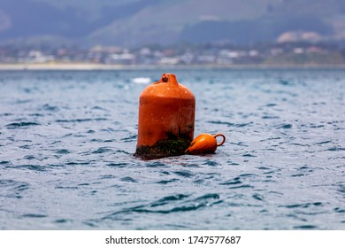 An Orange Buoy By The Beach IN New Zealand