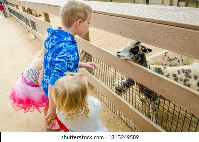 Orange, CA / USA - 11-10-2014: Children face a goat in a petting zoo at the Orange County Zoo.