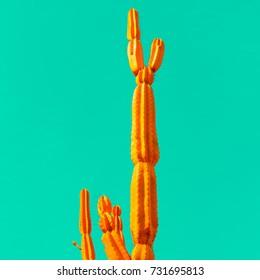 Orange cactus on blue. Minimal art