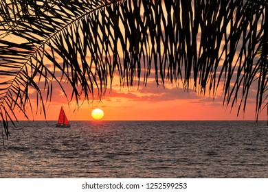 Orange calm ocean sunset. Red sail yacht is sailing. Beautiful view through the palm leaves