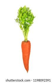 orange carrot isolated on white background