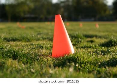 Orange cone in grass