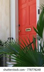 Orange Door and Palm Fronds