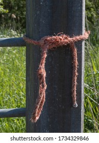 Orange farmers rope on a wooden fence pole