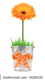 Orange flower in metal pot with bow on white background