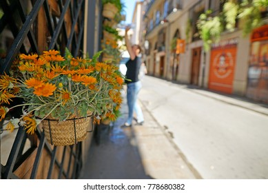 Orange flower in pot in window on a street in Valencia