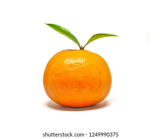 Orange fruit with green leaf isolate on white background. Tangerine in studio with green leaf on white background.