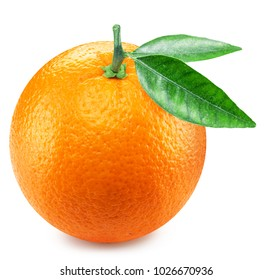 Orange fruit with orange leaves. Clipping path.