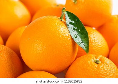 Orange fruits with green wet leaf. Shallow depth of field, focus in the drops of leaf. Orange background.