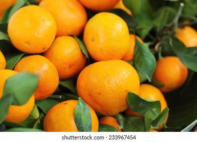 orange fruits in the market
