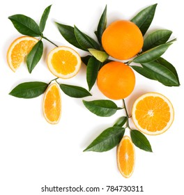 Orange fruits  ( sliced and wholes ) on a branch of orange tree with green leaves, isolated on white background. Top view.