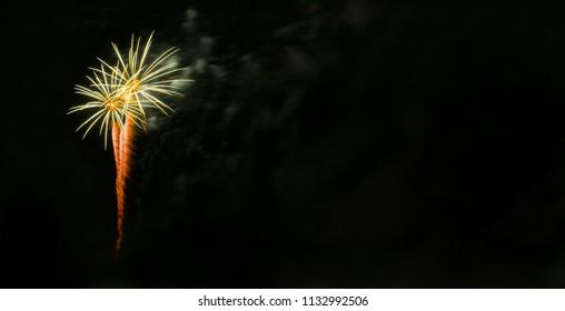 Orange and Green Palm Tree Fireworks