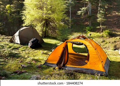 orange and green tents are in the green sunny forest
