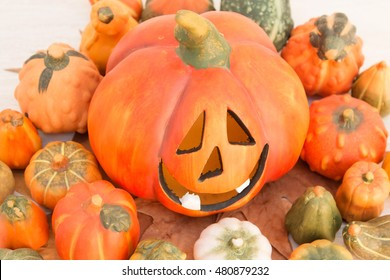 Orange Halloween pumpkin surrounded by many small pumpkins