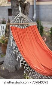 Orange hammock tied to a living tree