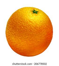 orange of illustration on white background