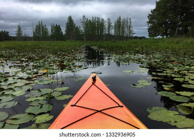 An orange kayak heads through the dark waters of a vegetation filled bog into an oncoming thunderstorm.