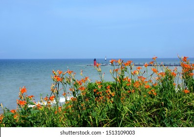 Orange lilies bloom along the shore fronting the South Haven Lighthouse on Lake Michigan.  Blue sky frames red lighthouse.