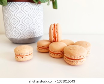 Orange macarons beside each other on white background