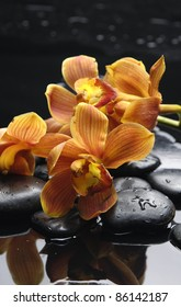 An orange orchid with therapy stones