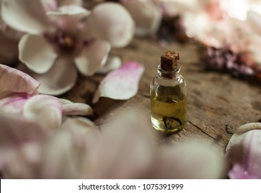 Orange perfumes. Perfumes bottle. Gift for woman. Spring flowering branches. Bouquet of pink roses on a white background. Minimal composition. Flat lay
