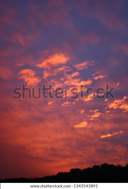 orange pink and blue sunset with tree line anchoring the photo