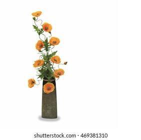 Orange poppy flower in a pot isolated over white