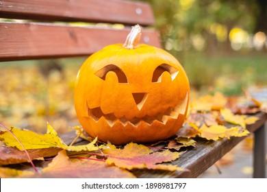 Orange pumpkin for halloween on a bench outside.Halloween concept.