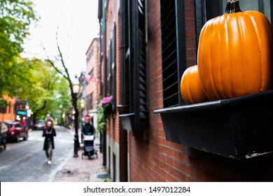 orange pumpkin on the street.