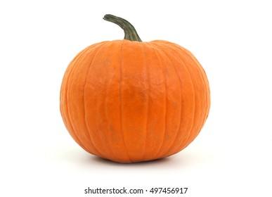 orange pumpkin on white background for halloween or thanksgiving