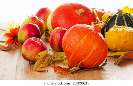 Orange Pumpkins with apples and  fall leaves isolated on white background. Selective focus