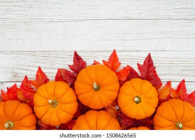 Orange pumpkins with fall leaves on weathered whitewash wood textured background with copy space for your message