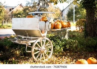 Orange pumpkins in white cart,Autumn decoration
