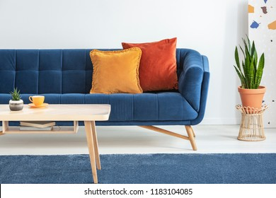 Orange and red cushions on a fancy, navy blue sofa and a basic, wooden coffee table on a navy peony rug in a white living room interior. Real photo.