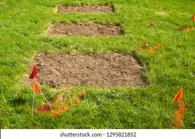 Orange and red flags on a lawn mark where power and cable lines lie beneath.