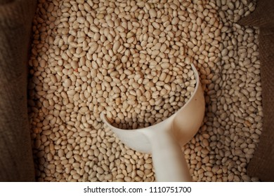 orange / red lentils. Legumes, pulses. Orange lentils full background, top view. Heap of red lentil (masoor dal) texture as background. Top view. some red lentils forming a background pattern