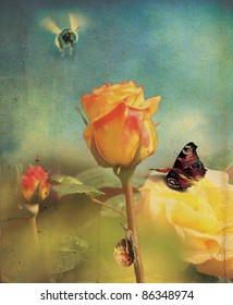 An orange rose flower head and stem set over a soft focus garden background with a grunge style effect applied, with a bee, butterfly and snail. Set on a portrait format.