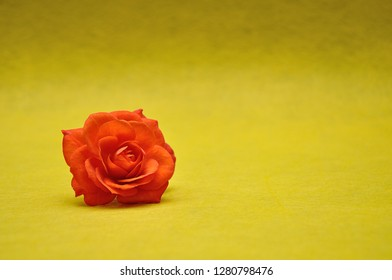 An orange rose on a yellow background