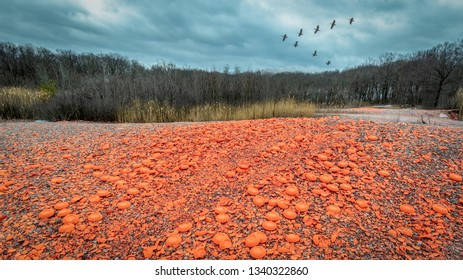 Orange skeet targets strewn about the ground with waterfowl flying above a skeet range on a overcast winter day