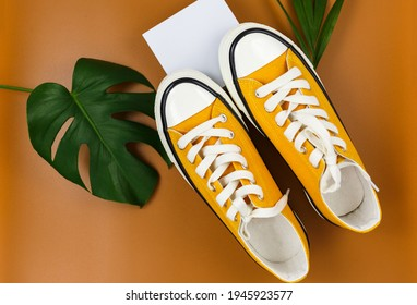 Orange sneakers on white geometry shapes with tropic leaves on brown background. Trendy fashion accessories. Flat lay, close up. Summer, vacation, holidays concept.