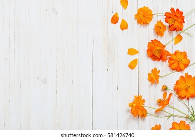 orange summer flowers on white wooden background