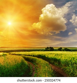 orange sunset in dramatic sky over road in green grass